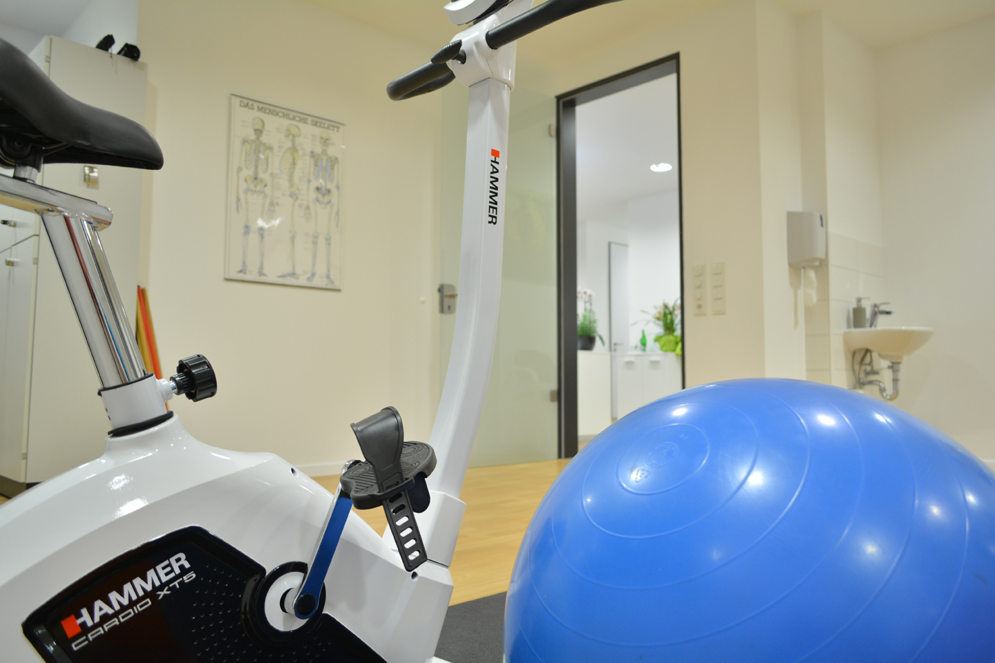 Sportgeräte in der Physiotherapie in Herford